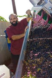 Chozas Harvest