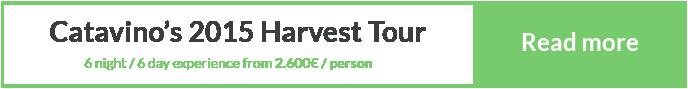 Harvest Tour Portugal Porto Douro Vinhos Verdes