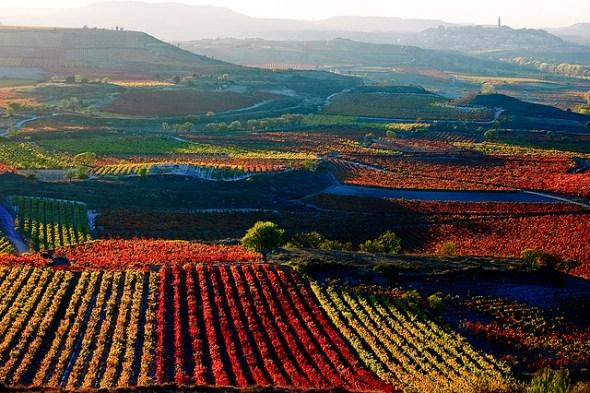 Rioja versus UNESCO