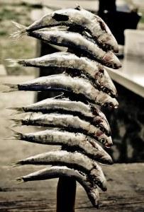 Malaga Seafood