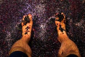 Purple Feet