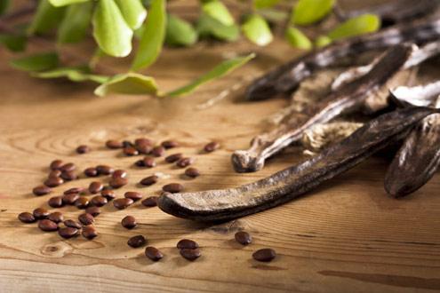 semente alfarroba