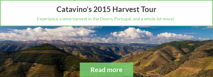 Harvest Tour Porto Douro Vinhos Verdes Portugal