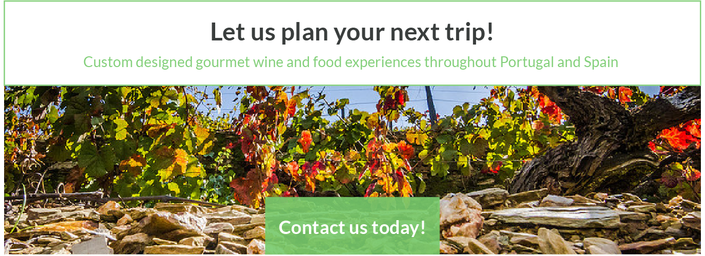 Custom Wine and Food Tours Portugal Spain