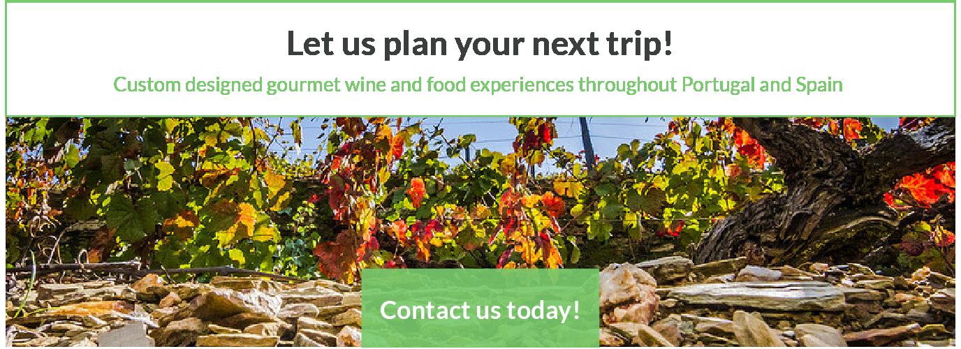 Custom Wine and Food Tours Portugal Spain