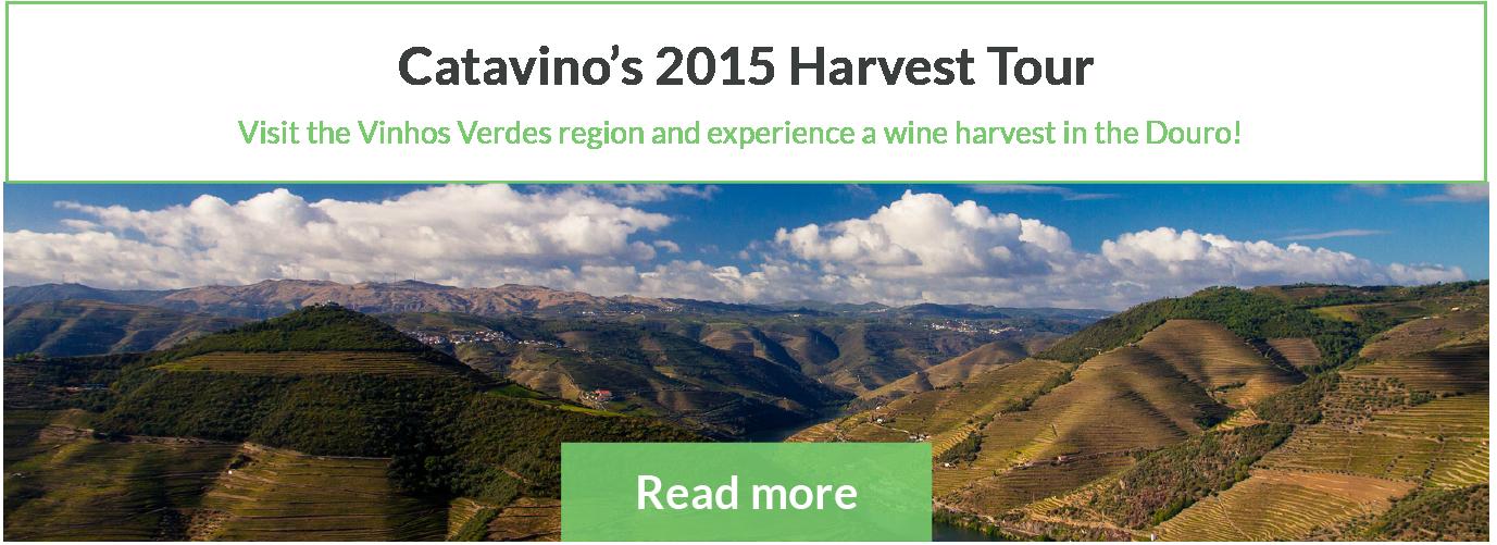 Douro Vinhos Verdes Wine Harvest Portugal