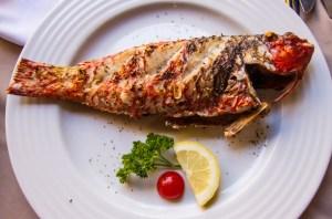 Portugal fish